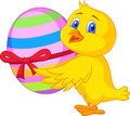 Cute chicken cartoon with easter egg illustration of Stock Images