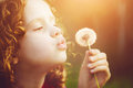 Cute child blowing dandelion Royalty Free Stock Photo