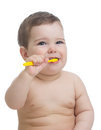 Cute child brushing teeth and smile, isolated over white. Royalty Free Stock Photo