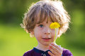 Cute child with dandelion on a green meadow closeup portrait of holding in the hand in background Royalty Free Stock Photography