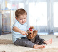 Cute child feeding pet dog Yorkshire terrier Royalty Free Stock Photography