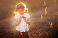 Cute child girl with wild flower on summer sunset field Royalty Free Stock Photo