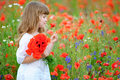 Cute child little girl with wild flowers at the summer field Royalty Free Stock Photo