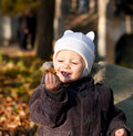 Cute child played by leaves Stock Images