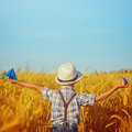 Cute child walking in the wheat golden field on a sunny summer day. Square. Royalty Free Stock Photo