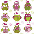 Cute Christmas owls Stock Photos