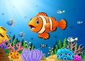 Cute clown fish cartoon in the sea