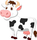 Cute cow cartoon illustration of Stock Image