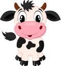 Cute cow cartoon Royalty Free Stock Photo