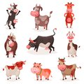 Cute cow characters set, funny cows in different positions cartoon vector Illustrations Royalty Free Stock Photo