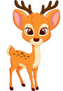 Cute deer cartoon illustration of Royalty Free Stock Photos