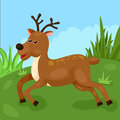 Cute deer illustration of running in the forest Royalty Free Stock Photography