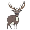 Cute Deer Reindeer Caribou Cartoon Character. Isolated On a White Background Doodle Cartoon Hand Drawn Sketch Vector.