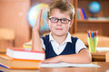 Cute dilligent schoolboy in glasses during lesson Royalty Free Stock Photos