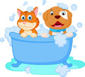 Cute dog and cat bath Royalty Free Stock Photo