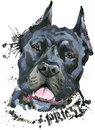 Cute Dog. Dog T-shirt graphics. watercolor Dog illustration. Aggressive dog breed.
