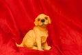 Cute Dog Figurine Royalty Free Stock Photo