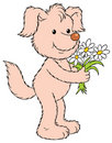 Cute dog with flowers Royalty Free Stock Image