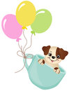Cute dog in teacup with balloons