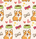 stock image of  Cute dog with toys and food kawaii background