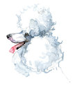 Cute dog. Watercolor dog. Poodle dog breed.