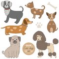 Cute dogs set Royalty Free Stock Photo