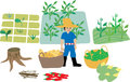 Cute drawing of a blue shirt farmer with agricultural crops and his farm elements a basket of potatoes green peas corns and chills Royalty Free Stock Photos