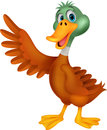 Cute duck cartoon waving illustration of Stock Photo