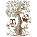 Cute duo owls hang on the tree, Wildlife, Print, Vector