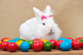 Cute easter bunny sitting iamong colorful eggs among on golden background Stock Image