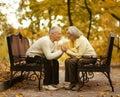 Cute elderly couple walking in autumn park Stock Photography