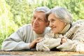 Cute elderly couple walking in the park Stock Photos