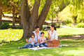 Cute family picnicking in the park Stock Photos
