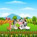Cute farm animals on the hills