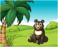 A cute fat bear at the hills illustration of Royalty Free Stock Images
