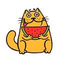 Cute fat cat eats watermelon. cat. Isolated vector illustration.