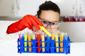 Cute female researcher in laboratory Stock Image