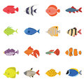 Cute fish vector illustration icons set. Tropical fish, sea fish, aquarium fish set isolated on white background.