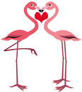 Cute flamingo Stock Images