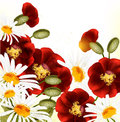 Cute floral background with red poppyes and chamomiles Stock Photo