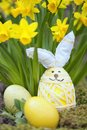 Cute floral decoration with Easter egg Royalty Free Stock Photo