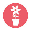 Cute flower garden with pot isolated icon