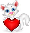 Cute fluffy white cat holding heart love illustration of Royalty Free Stock Photos