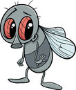 Cute Fly Cartoon Illustration