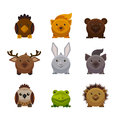 Cute forest animals, flat style vector set