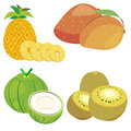 Cute fruit collection06 Royalty Free Stock Images