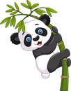 Cute funny baby panda hanging on a bamboo tree illustration of Stock Photo