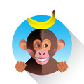 Cute funny monkey with banana in circle Stock Photo