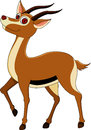Cute gazelle cartoon Royalty Free Stock Images