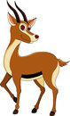 Cute gazelle cartoon Royalty Free Stock Photos